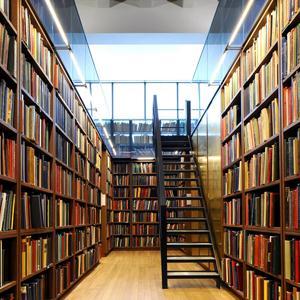 Библиотеки Навлы
